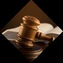 Representation in official procedures, data provision